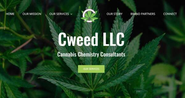 Cweed LLC website - Designed & built by The National Revue