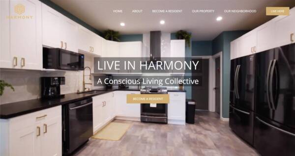 Harmony Collective website - Designed & built by The National Revue